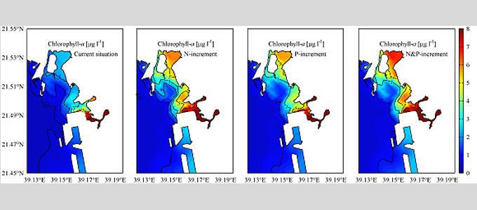 Simulation der Chlorophyll-a-Konzentrationen im Oberflächenwasser der Bucht von Jeddah als Folge eines 50%igen Anstiegs der Nährstofffrachten