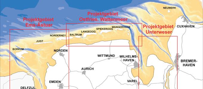 Untersuchte Gebiete im Ostfriesischen Wattenmeer